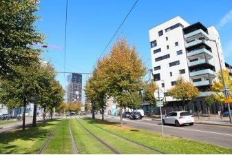 L'immobilier neuf à l'arrêt à Strasbourg