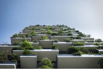 Logement neuf et préservation de la biodiversité : est-ce possible ?
