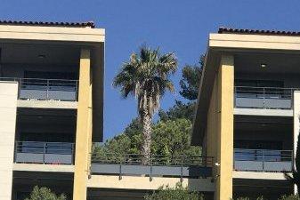 Prix immobilier neuf : les communes touristiques du littoral français toujours très prisées